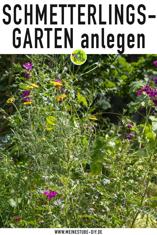 Schmetterlingsgarten für Insekten anlegen, meinestube-diy